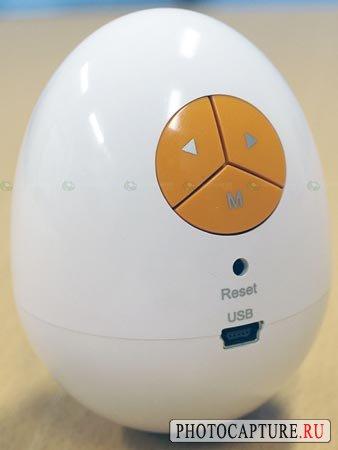 Фоторамка в форме... яйца